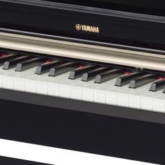Цифровое пианино Yamaha Arius YDP-162PE